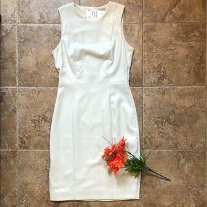 Sheath Dress size 36/6